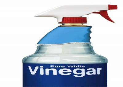 Making Vinegar a Better-Smelling Cleaner – Blessed Earth