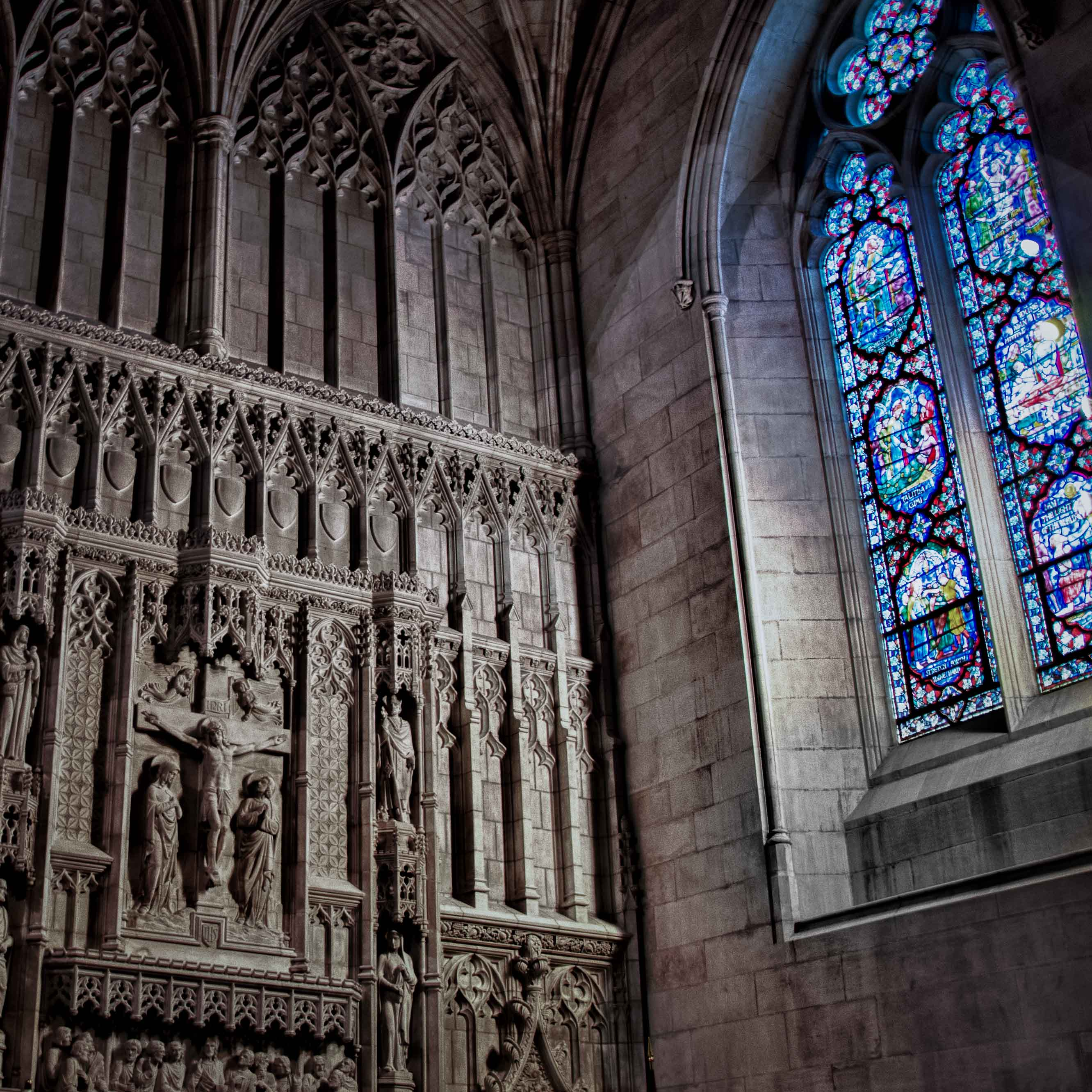 National Cathedral/Blessed Earth Partnership Begins This Month!