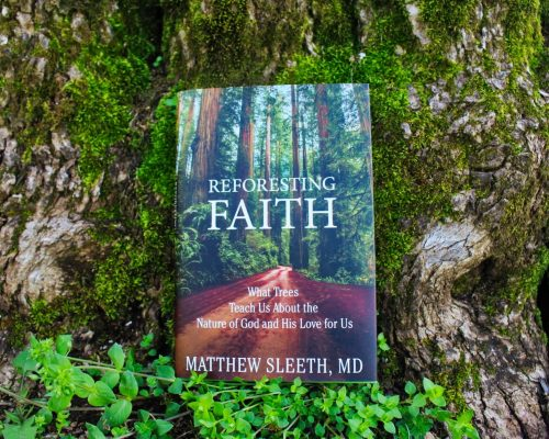 Reforesting Faith Releases April 16th-Order Now!