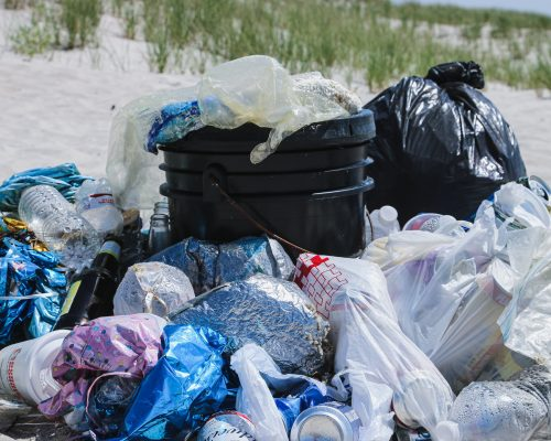 How Plastic Bags Impact the Environment- Video